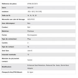 DT06-2S-CE13